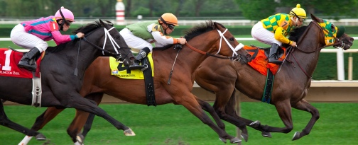 Racing_at_Arlington_Park